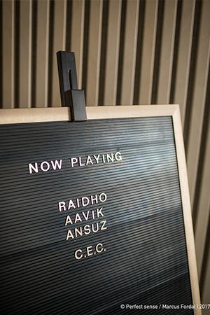 Event_Raidho-Aavik-Ansuz_01